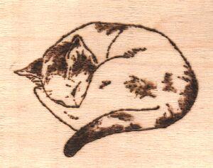 gatto pirografo