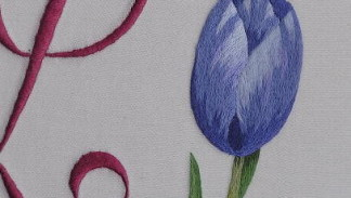 tulipani a punto raso